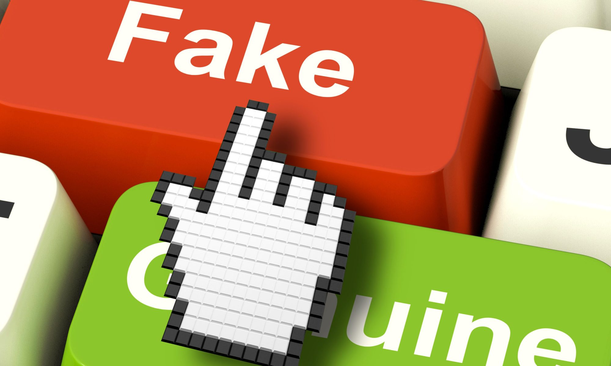 The cost of Fake Online Traffic 1